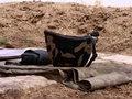 Ordumuz 2 erməni hərbçini məhv etdi: Dağlıq Qarabağ münaqişəsi