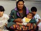 Azərbaycanlı qız evdən 1,5 milyon oğurlayıb qaraçıya verdi: Maraqlı