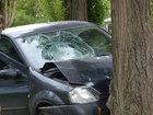 Azərbaycanda avtomobil ağaca çırpılıb, ölən və yaralanan var : HADİSƏ