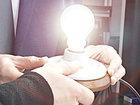Qrafen lampalarının istehsalına başlanılıb: Texnologiya