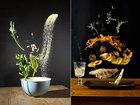 Asılmış yemək - FOTO: Fotosessiya