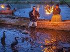 Balıqçı qarabatdaqlar - FOTO: Fotosessiya