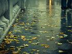 Bakıda qadını yağış itirdi - FOTO: CƏMİYYƏT