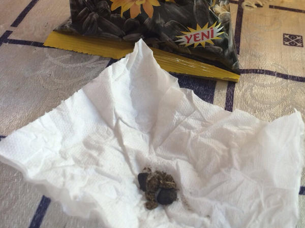 """""""Al-tum"""" paketindən qoyun qığı çıxdı - FOTO"""