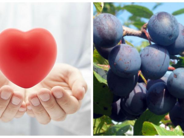 İnfarkt riskini azaldıb görmə qabiliyyətini artıran meyvə