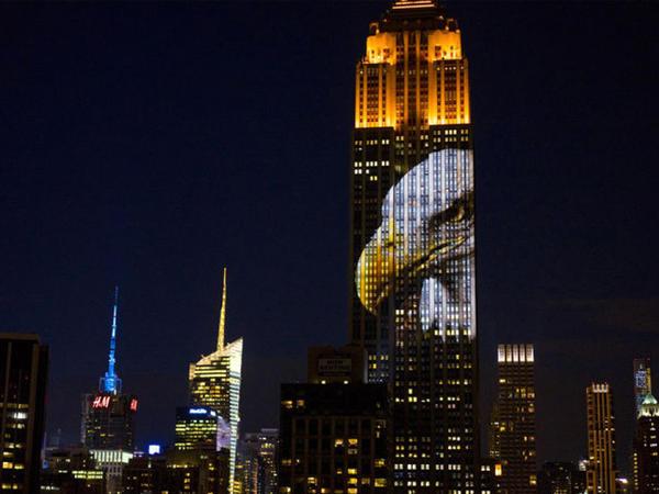 Empire State Building-i heyvanlar bəzədi - FOTO