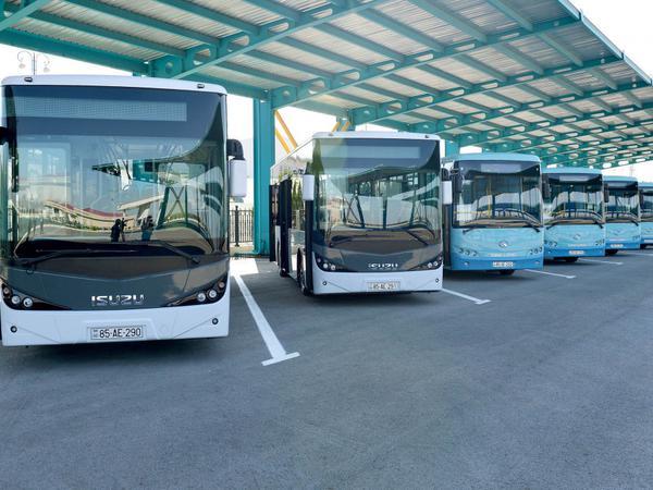 Naxçıvanda yeni avtobuslar - FOTO