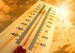 Yunanıstanda istilər son 10 ilin rekordunu yeniləyib