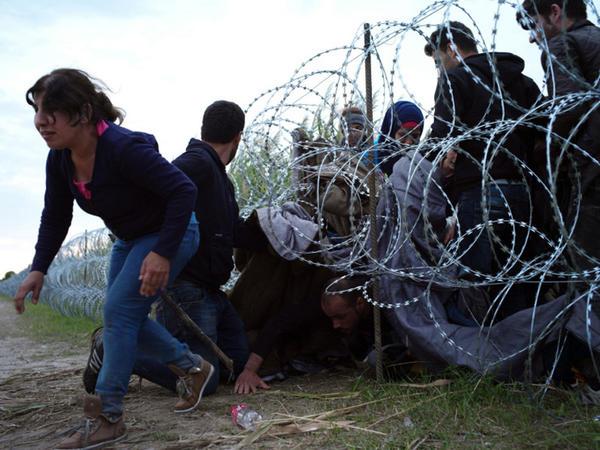 Miqrantların deportasiyasına dair gizli plan
