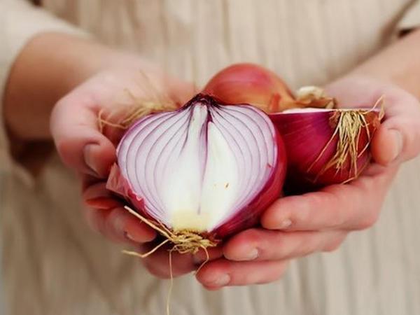 Soğan yumurtalıq xərçəngini müalicə edir