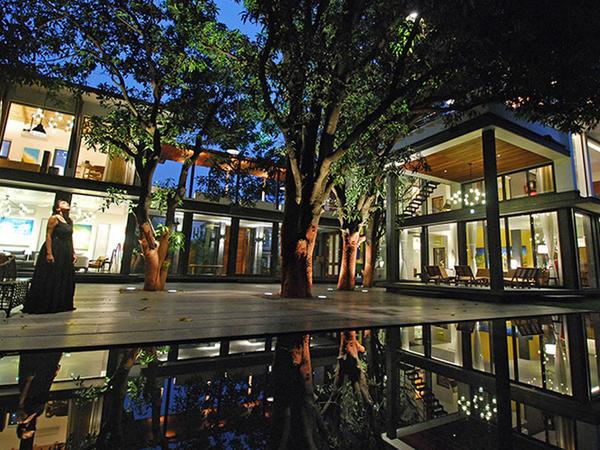 Manqo ağaclı ev - FOTO