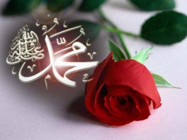 Allah Təala Rəsuli-Əkrəmi (s) belə tanıdır