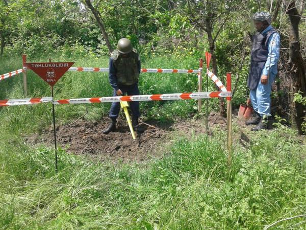 Goranboyda parkın ərazisində mərmi aşkarlandı - FOTO