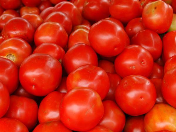 Bu ölkə Türkiyədən pomidor idxalını dayandırdı