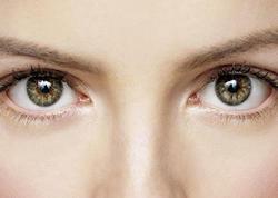 Gözün buynuz qişasının Azərbaycana gətirilməsinə icazə verilir