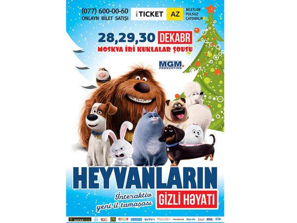 """""""Ev heyvanlarının sirli həyatı"""" - İlk dəfə Bakıda"""