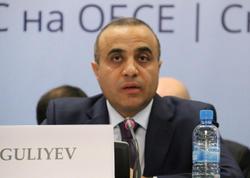 """Azay Quliyev: """"Xəzər dənizinin yekun hüququ statusu hələ də müəyyən edilməyib"""""""