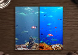 """Tanış olun: Samsung Galaxy S8-in ilk <span class=""""color_red"""">VİDEOsu</span>"""