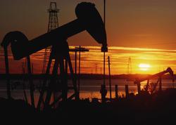 BP neft hasilatını azaltmağa hazırdır, əgər...