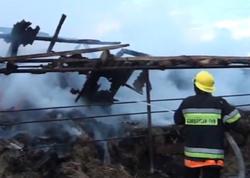 Zaqatalada tövlə və 50 ton ot yandı - VİDEO - FOTO