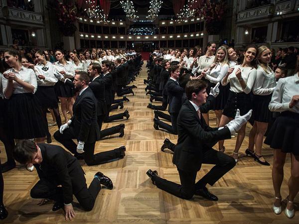 Vyana məşhur bala hazırlaşır - FOTO