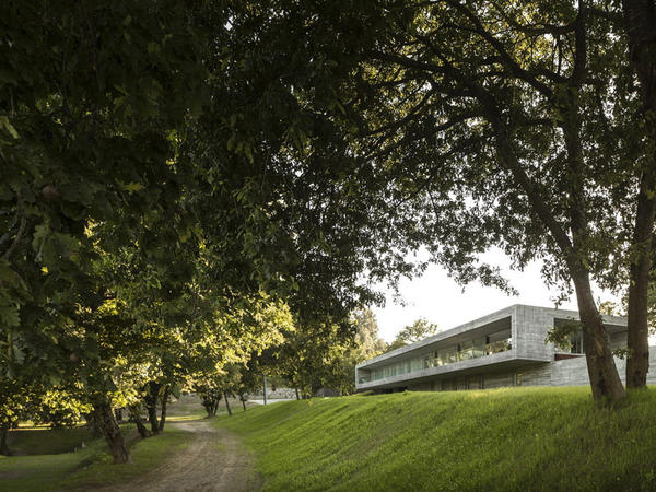 Yaşıl terraslar arasında ev - FOTO