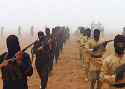 300-dən çox isveçli İŞİD-ə qoşuldu