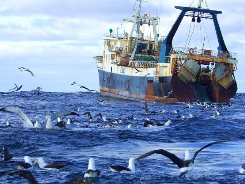 Rusiyanın balıqçı gəmisində zəhərlənmə: 4 ölü, 4 yaralı