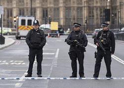 """Tereza Mey: """"Londonda terror aktını britaniyalı törədib"""""""