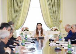 """Birinci vitse-prezident Mehriban Əliyeva: """"Biz son illər artıq Azərbaycanın standartlarını yaratmışıq"""""""