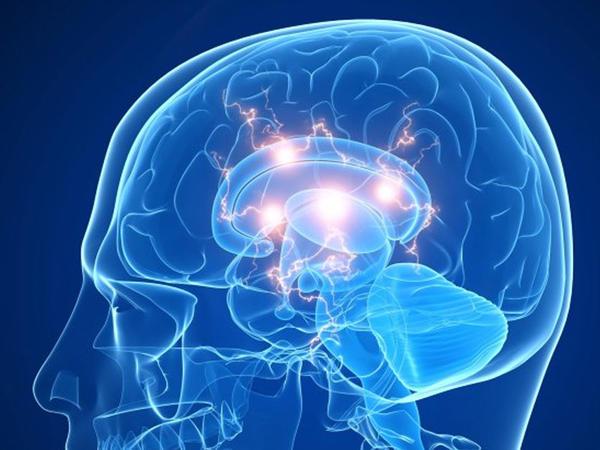 Dörd ilə insan beyni kompüterlə əlaqələndiriləcək