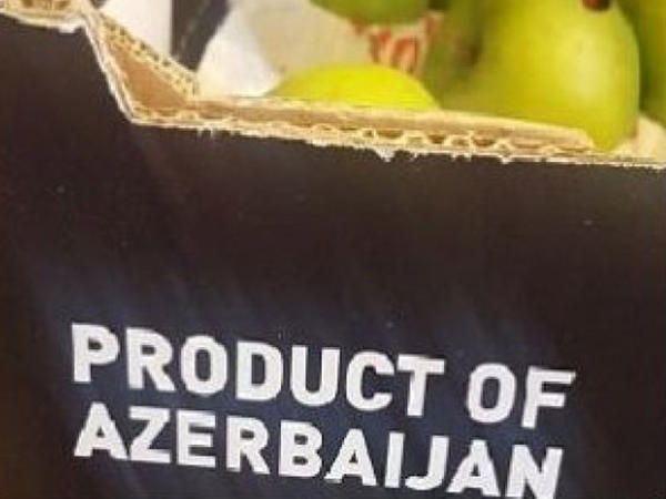 Ermənistanda Azərbaycan almalarını tələsik məhv edirlər