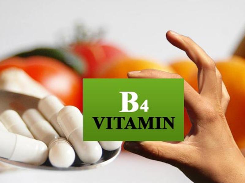 B4 vitamininin faydaları