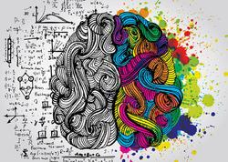 Beyin niyə iki yarımkürəyə bölünür?