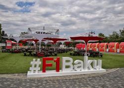 """Dənizkənarı Milli Parkda """"Formula-1 şəhərciyi"""" - FOTO"""