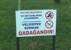Sumqayıt bulvarında yeni yasaq - VİDEO