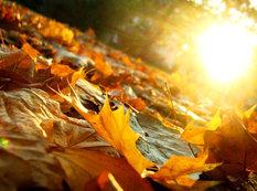 Payızın son gününün havası