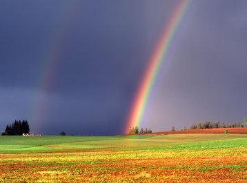 Azərbaycanın bəzi bölgələrinə yağış yağacaq