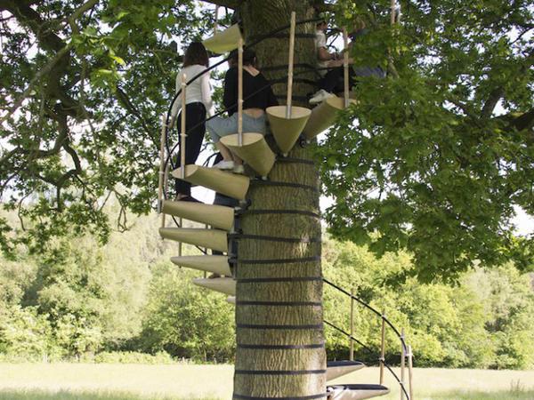 İstənilən ağac üçün pilləkən - FOTO