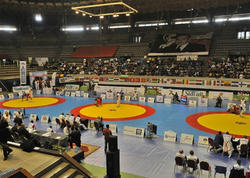 Dünya çempionatında 3 medal qazandıq