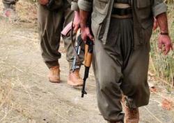 PKK-nın ikinci adamı məhv edildi