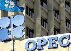 Azərbaycan OPEC qarşısında öhdəliyini tam yerinə yetirib