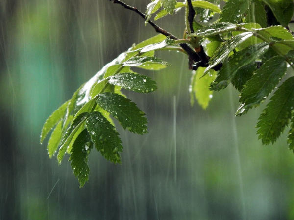 """Bakıya yağış, rayonlara dolu... - <span class=""""color_red"""">HAVA PROQNOZU</span>"""