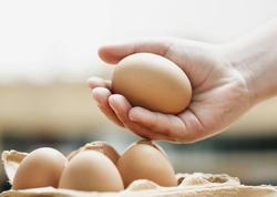 """Nəyə görə aprel ayında saxta və keyfiyyətsiz yumurtalar çoxalır - <span class=""""color_red"""">Ekspertdən xəbərdarlıq - VİDEO</span>"""