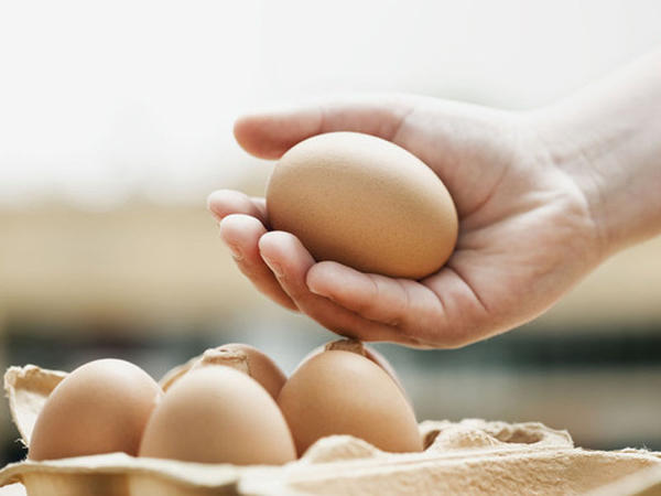 Yumurta erkən ölüm qarşısında ən böyük sipərdir