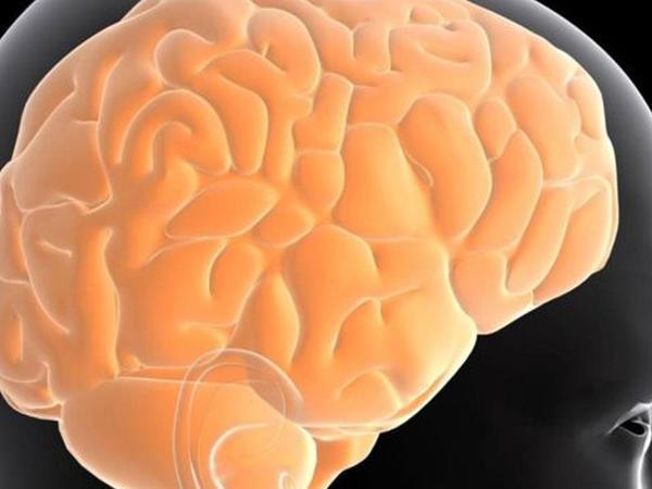 Beyinin böyüməsi qidalanmadan asılıdır?