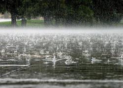 Xəbərdarlıq: yağış yağacaq, dolu düşəcək