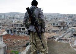 Suriyada daha 14 terrorçu zərərsizləşdirildi