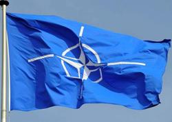 Gürcüstanda NATO təlimləri keçiriləcək