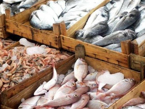 Bakıda ilk balıq bazarı yaradılacaq
